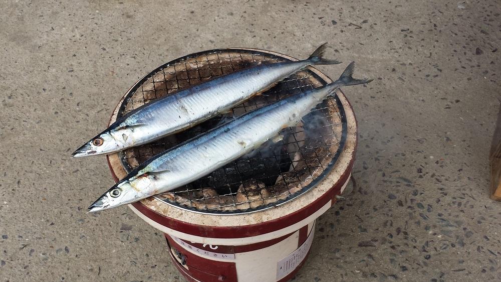 提督、秋刀魚を焼く